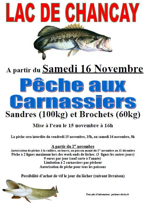sandre_brochet_16-11-2013-jpg